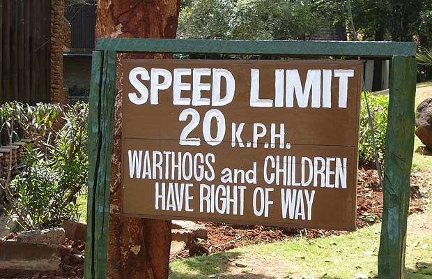Signs - warthogs have right of way, Nairobi