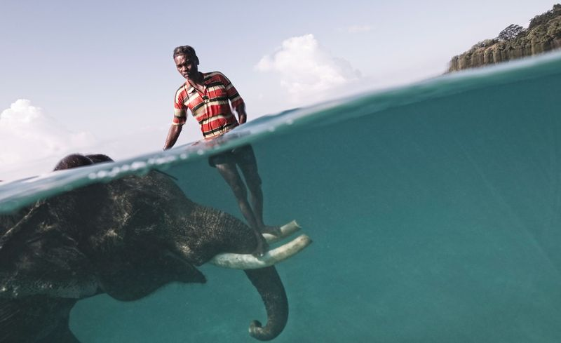 Nazroo, mahout, with elephant Rajan, Havelock, Andaman Islands, Cesare Naldi, National Geographic