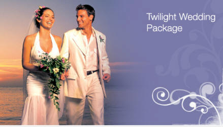 Wedding_twilight