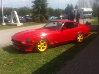 Peter Wright Datsun 240Z (Medium)