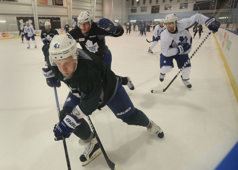 RL_leafs_practice_27